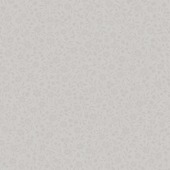 Graham & Brown Vliesbehang 32-606 Mini Bloemen Wit