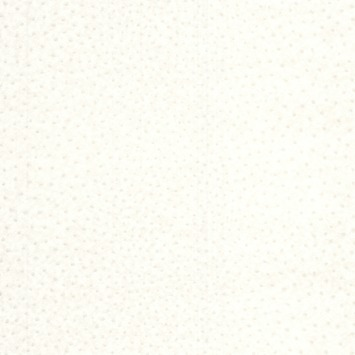 Vliesbehang Struisvogel wit 32-637