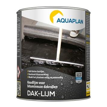 Aquaplan daklijm 1kg