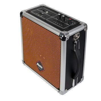 Alecto bluetooth luidspreker MPA-12