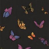 Graham & Brown Vliesbehang 31-174 Vlinder Zwart Glitter 10 meter