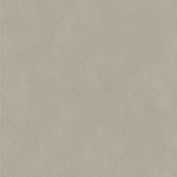 Vliesbehang Uni wolk taupe 2255-21