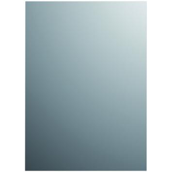 Plieger Basic spiegel zilver 60X45 cm