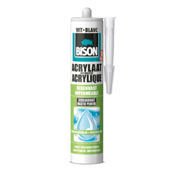Bison acrylaatkit regenvast wit 300 ml
