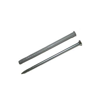 Fischer Constructieplug SXRL 10x100 mm met torx schroef 4 stuks