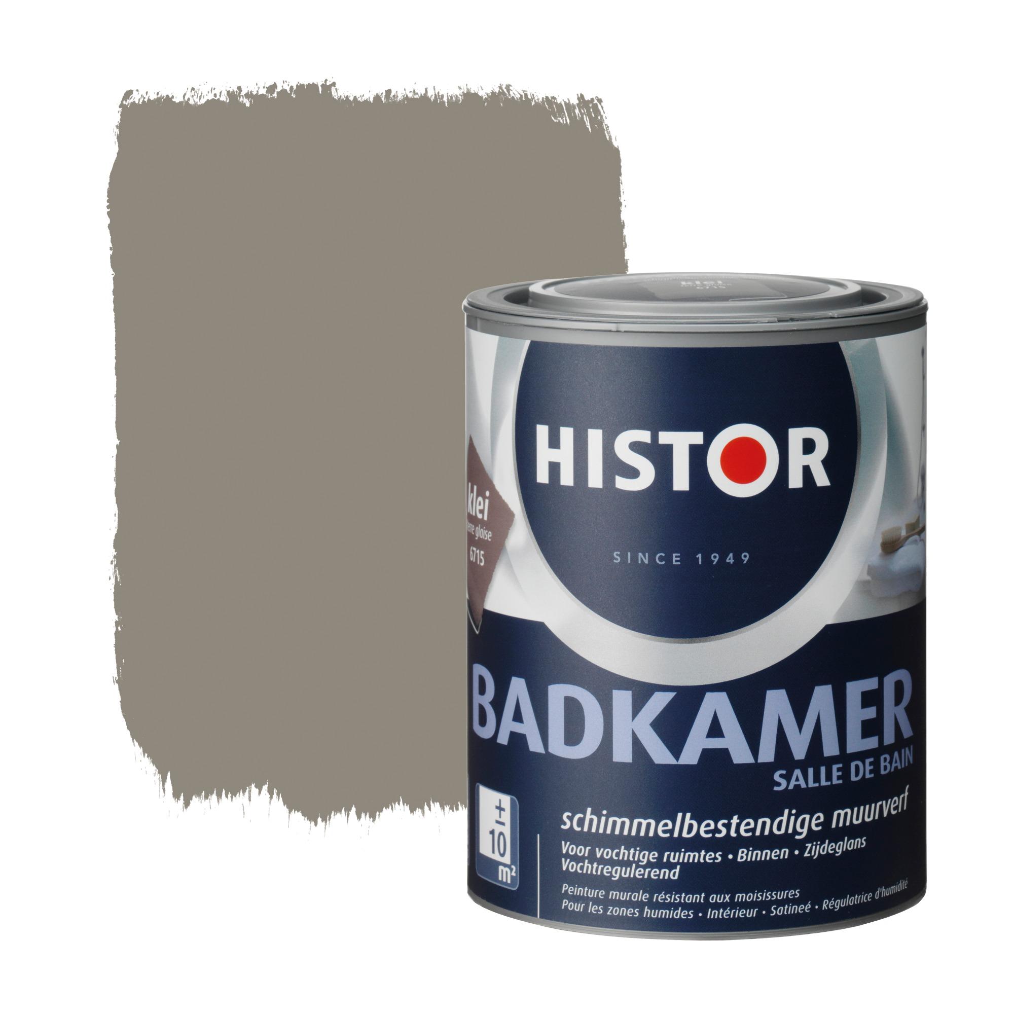histor muurverf badkamer klei 1 liter | muurverf kleur | muurverf, Badkamer
