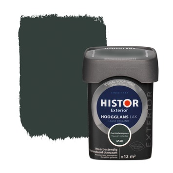 Bekend GAMMA | Histor Exterior lak oud hollands groen hoogglans 750 ml BF92