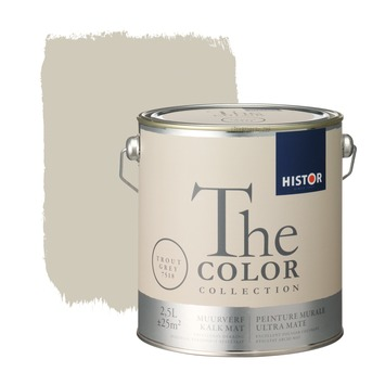 Histor The Color Collection muurverf trout grey 2,5 liter
