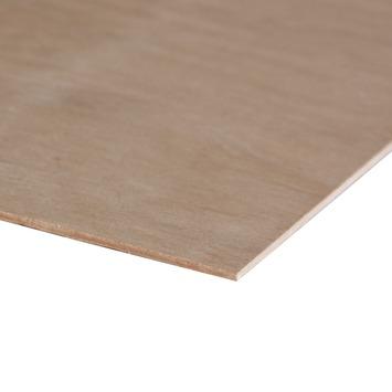 Multiplex hardhout 122x61 cm 3,6 mm