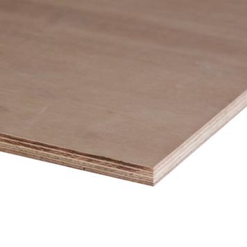 Multiplex hardhout 122x61 cm 15 mm