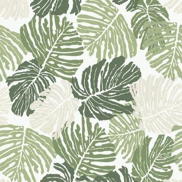 Gamma graham brown vliesbehang 32 812 palmbladeren groen kopen natuur bloemen - Graham en bruine behang ...