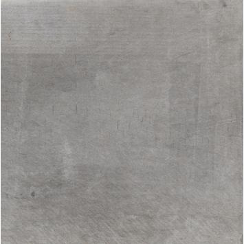 Stoeptegels 30x30 Gamma.Vloertegel Dust Grigio 30x30 Cm 1 M
