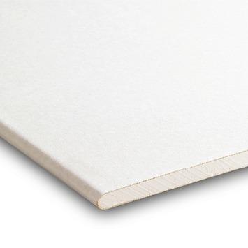 Gyproc plafondplaat ca 200x60x0,95 cm