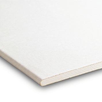 Gyproc plafondplaat ca. 300x60x0,95 cm
