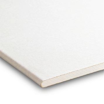 Gyproc plafondplaat ca. 260x60x0,95 cm