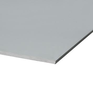 Multiplex plaat profipaint gegrond grijs 15 mm 122x61 cm