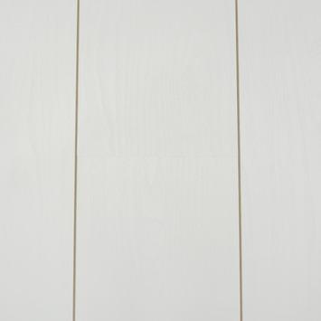 gamma   lifetime trend laminaat v-groef white wit 2,66m² kopen?  