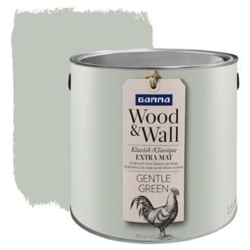 GAMMA Wood&Wall krijtverf Gentle Green 2,5 liter