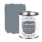 GAMMA Kleurtester lak nr. 071 Boedapest zijdeglans 100ml