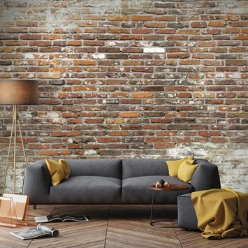 Fotobehang Brick wall 2 (105416)