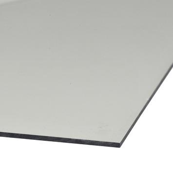 Martens acrylplaat transparant 160x66 cm
