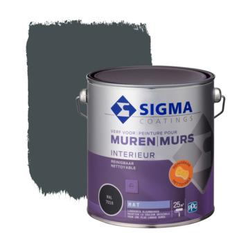 Sigma reinigbare muurverf RAL 7016 2,5 liter