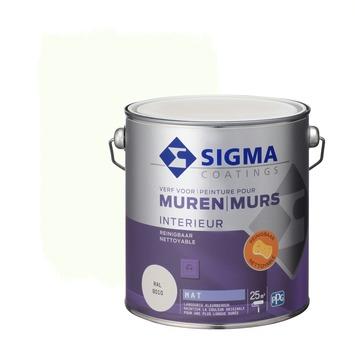 Sigma reinigbare muurverf RAL 9010 2,5 liter