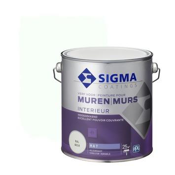 Sigma hoogdekkende muurverf RAL 9016 2,5 liter