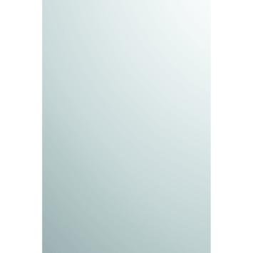 Plieger spiegel zilver 90x45 cm