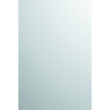 Spiegel Op Maat Gamma.Plieger Spiegel Zilver 90x45 Cm