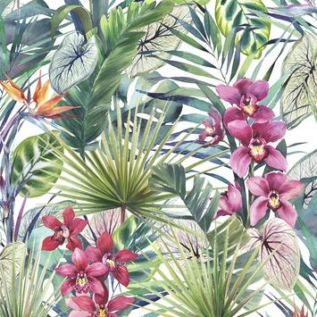 Vliesbehang Aloha tropisch multicolour 104885