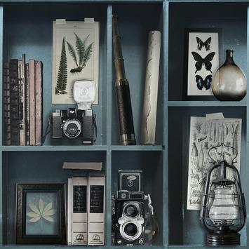 Vliesbehang Bibliotheek blauw 100277