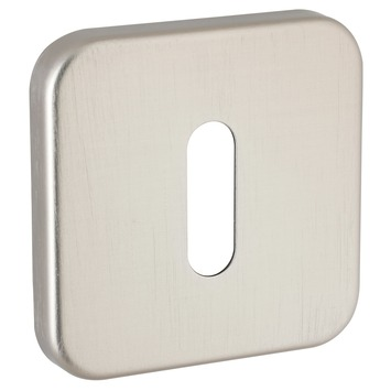 GAMMA sleutelplaat vierkant verdekt rvs look