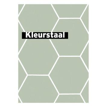 Behangstaal vliesbehang Honingraat groen 101811