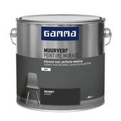 GAMMA muurverf graniet mat 2,5 liter