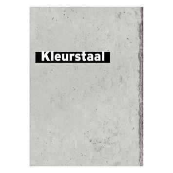 Behangstaal vliesbehang Betonplaten grijs 105148