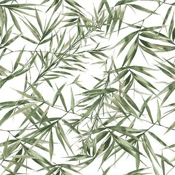 Vliesbehang Bamboe groen-wit 104524