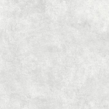 Vliesbehang Beton cire lichtgrijs 106988