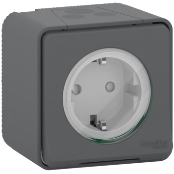 Schneider Electric Mureva Styl wandcontactdoos 1-voudig IP55 antraciet