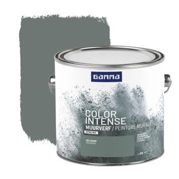 GAMMA Color intense muurverf extra mat 2,5 L celadon