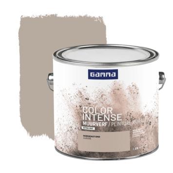 GAMMA Color intense muurverf extra mat 2,5 L morgenstond