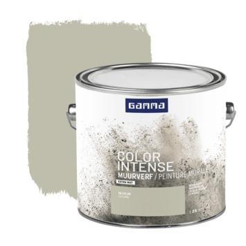 GAMMA Color intense muurverf extra mat 2,5 L olivijn