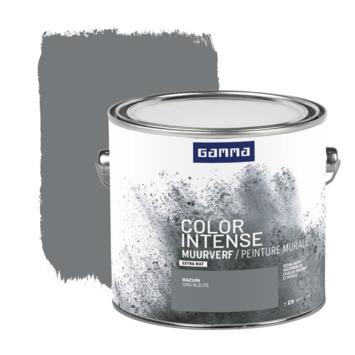 GAMMA Color intense muurverf extra mat 2,5 L bazuin