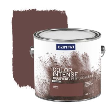 GAMMA Color intense muurverf extra mat 2,5 L kareel