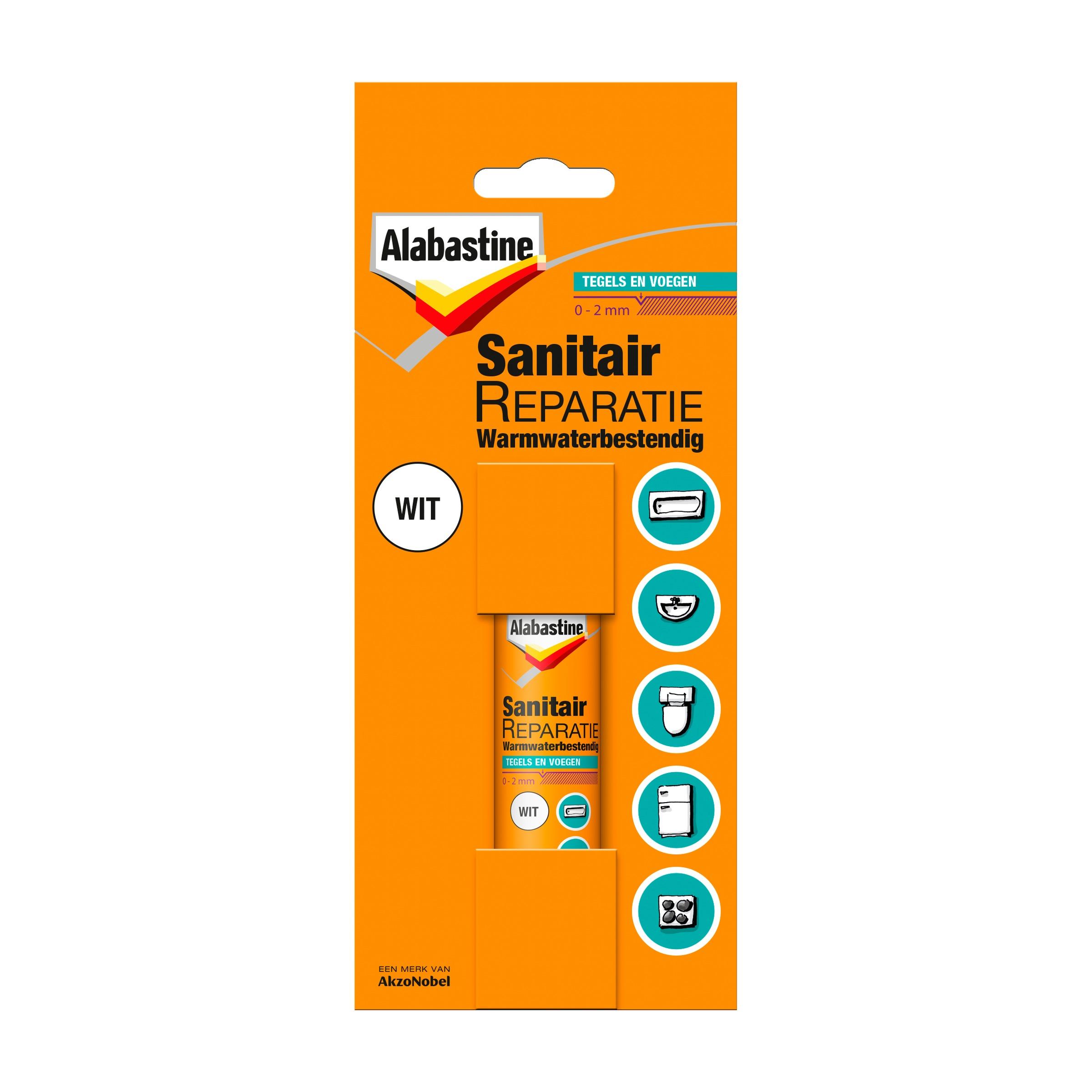 Alabastine sanitairreparatie 12 ml
