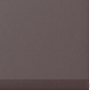 GAMMA rolgordijn uni lichtdoorlatend 5701 bruin 60x190 cm