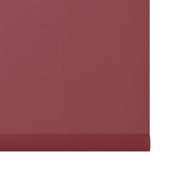 GAMMA rolgordijn uni lichtdoorlatend 5746 rood 60x190 cm