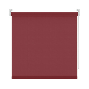 GAMMA rolgordijn uni lichtdoorlatend 5746 rood 180x190 cm