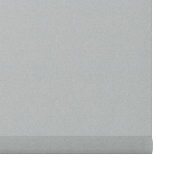 GAMMA rolgordijn uni badkamerkwaliteit lichtdoorlatend 1889 zilver glans 60x190 cm