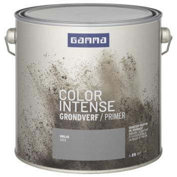 GAMMA color intense grondverf 2,5 L grijs